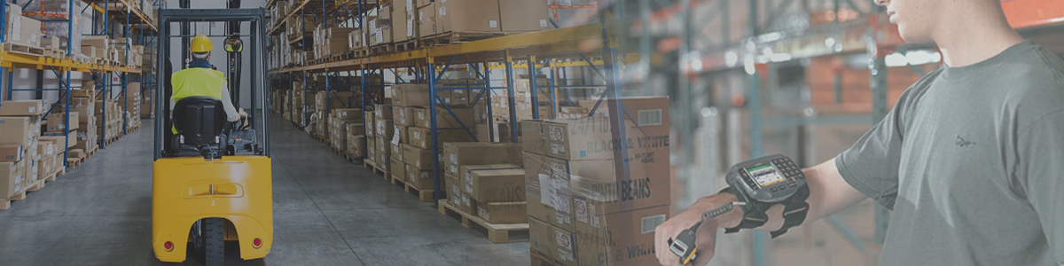 Wearables in Warehousing